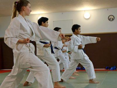 Karaté Paris 12 enfants, ados et adultes