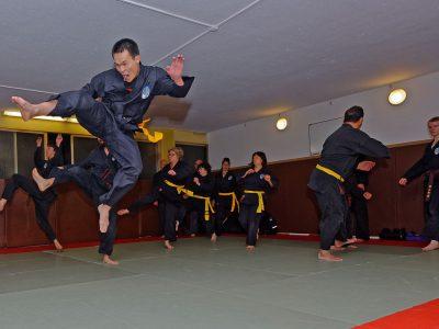 le Tây Son Vo Dao : art martial d'origine vietnamienne