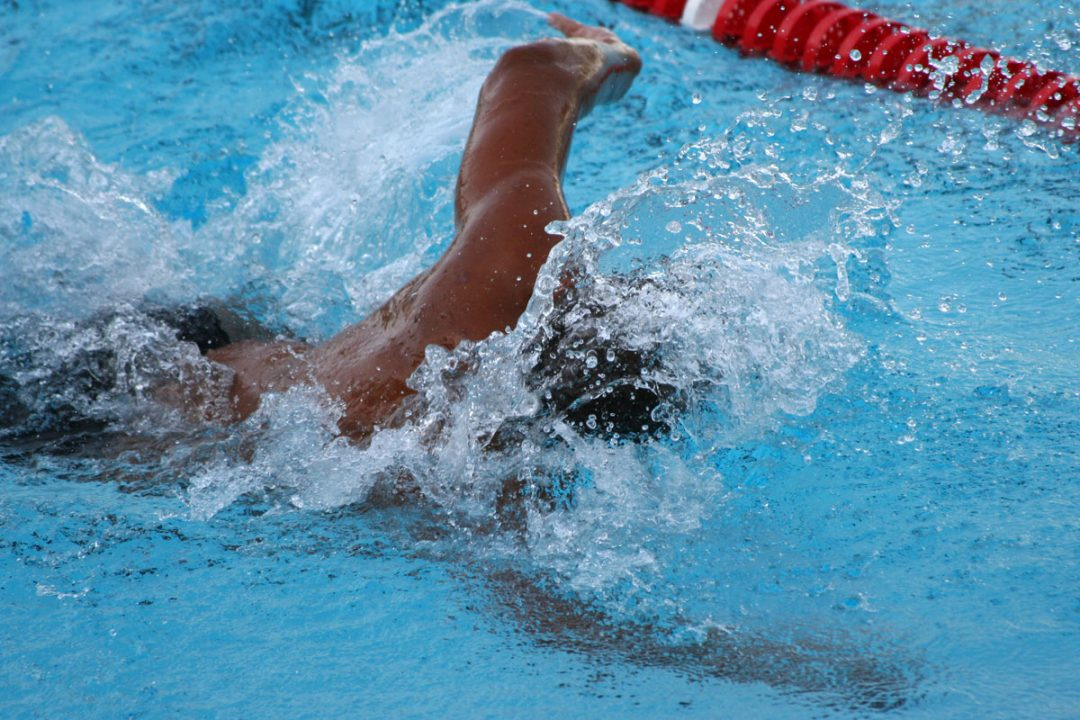 Adultes, apprenez à nager !