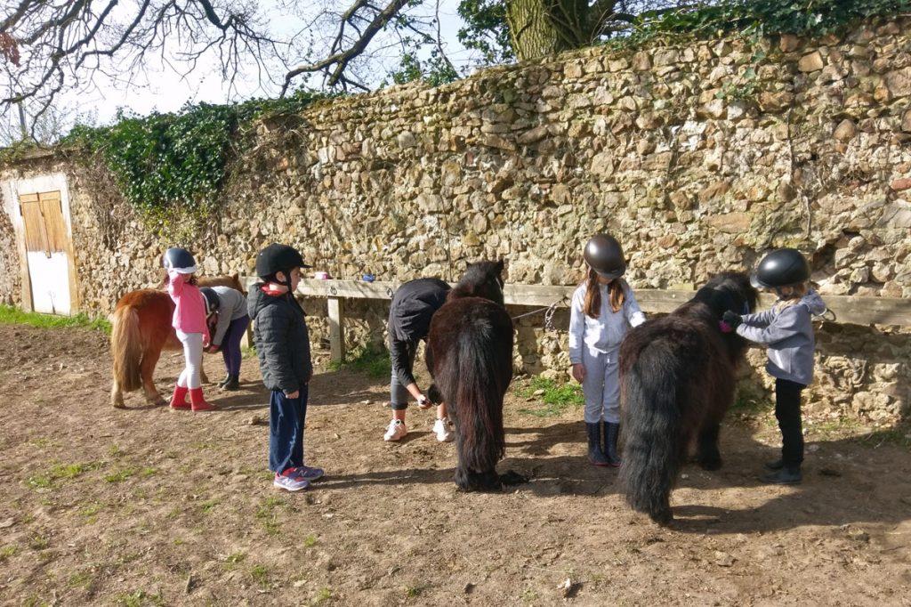 Camp poney pour maternelles et primaires